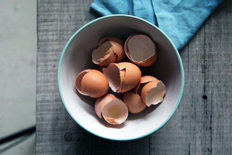 Coquilles D'œufs, Vertus